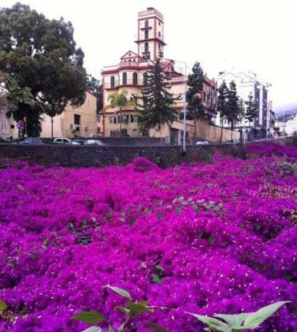 Festival do Vinho, do Bordado e do Artesanato da Madeira